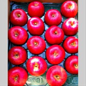 贈答用【りんご】【送料無料】お歳暮ギフト!【特選品】《シナノスイート》《群馬名月》《あいかの香り》《サンふじ》等、10キロ2段入り