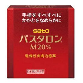 【第3類医薬品】佐藤製薬 パスタロンM20% 100g