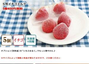 【5号サイズ】サンタマカロンのメリーゴーランドケーキ(クリスマスケーキ)
