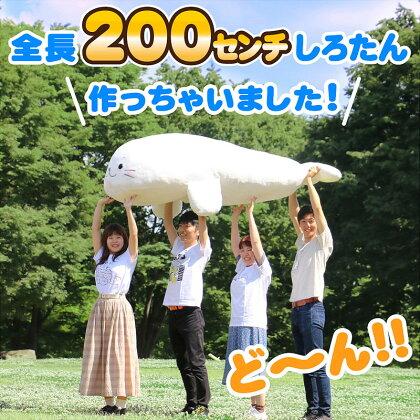 予約販売!しろたん20周年記念200cm抱き枕20周年記念販売数量限定シリアルナンバー入りビック大きい最大アザラシあざらしかわいいキャラクターマザーガーデン