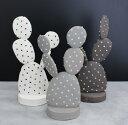 【STUDIO.ZOK】陶植 - ウチワサボテン / Ceramic Botanical