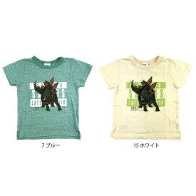 【メール便対応】【SiShuNon/FARM】ステゴサウルスTシャツ ファーム キッズ 恐竜 ステゴサウルス 半袖Tシャツ 男の子
