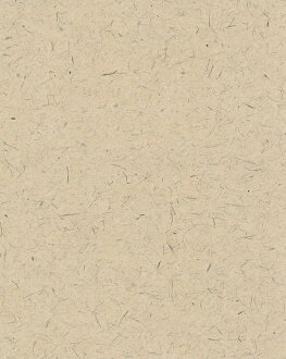 Tosa washi wallpaper light catalyst hinokibrown (wallpaper / kabe紙 / cross / SIP / shop)