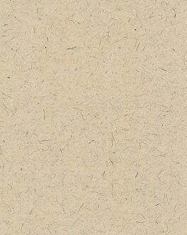 土佐犬纸壁纸光触媒 hinokibrown (壁纸 / kabe紙 / 交叉 / SIP / 商铺)