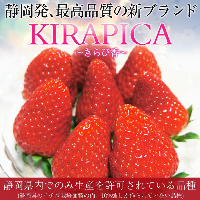 【送料無料】静岡産 新ブランドいちご 「きらぴ香」 贈答用大粒いちご 1パック(9〜15粒入り、約450g)