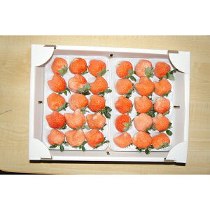 【送料無料】【静岡産ブランドいちご】【希少品種「桃薫」】【お得】 ふぞろいいちご2パック(9〜20粒、約300g x 2) イチゴ 苺 桃 孫 子ども とうくん とおくん プレゼント ギフト 贈り物