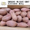 【送料無料】【鹿児島県・種子島産】訳あり 安納芋 大きさお任せ 約5kg(北海道沖縄別途送料加算)あんのういも/干し芋/焼き芋/煮物…