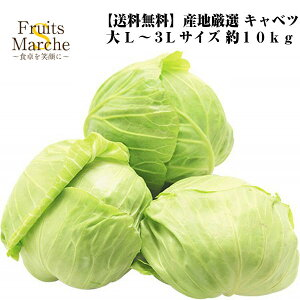 【送料無料】【産地厳選】大玉キャベツ L〜3Lサイズ 約10kg(北海道沖縄別途送料加算)