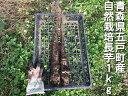長芋 1kg 自然栽培 無農薬 無肥料 自然農法 オーガニック 有機JAS相当 青森県 五戸町産 生産者 ちへいの畑 山口 平(…