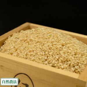 【令和元年度産米】 つがるロマン 玄米 20kg 自然農法 (青森県 小田農園) 産地直送