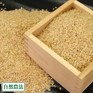 【令和元年度産】つがるロマン 玄米 10kg 自然農法 (青森県 津軽自然農法研究会) 産地直送