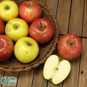 【家庭用】有機りんご 2色セット(ふじ・シナノゴールド) 3kg箱 有機JAS (青森県 晴香園 福田秀貞) 産地直送