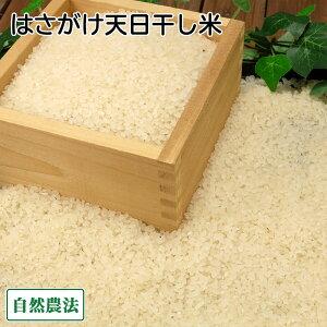 【令和2年度産】田口さんちのはさがけ天日干し米(つがる) 精米 5kg 自然農法 (青森県 だんごっこファーム) 産地直送