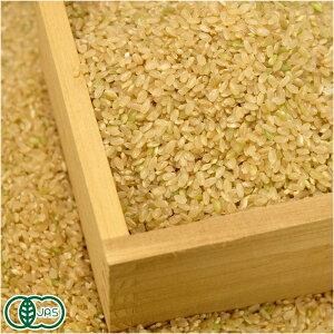 【令和元年度産】有機米 サニシキ 玄米 10kg 有機JAS 自然農法 (宮城県 仙台たんの農園) 産地直送