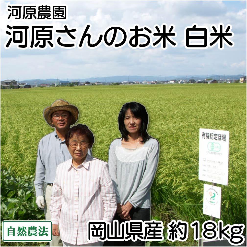 [30年度米] 河原さんのお米 白米 約18kg 自然農法無農薬米 (岡山県 河原農園) 産地直送