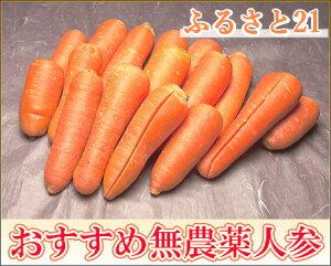 【セール】【訳あり】 にんじん 5kg箱 農薬不使用 (ふるさと21)