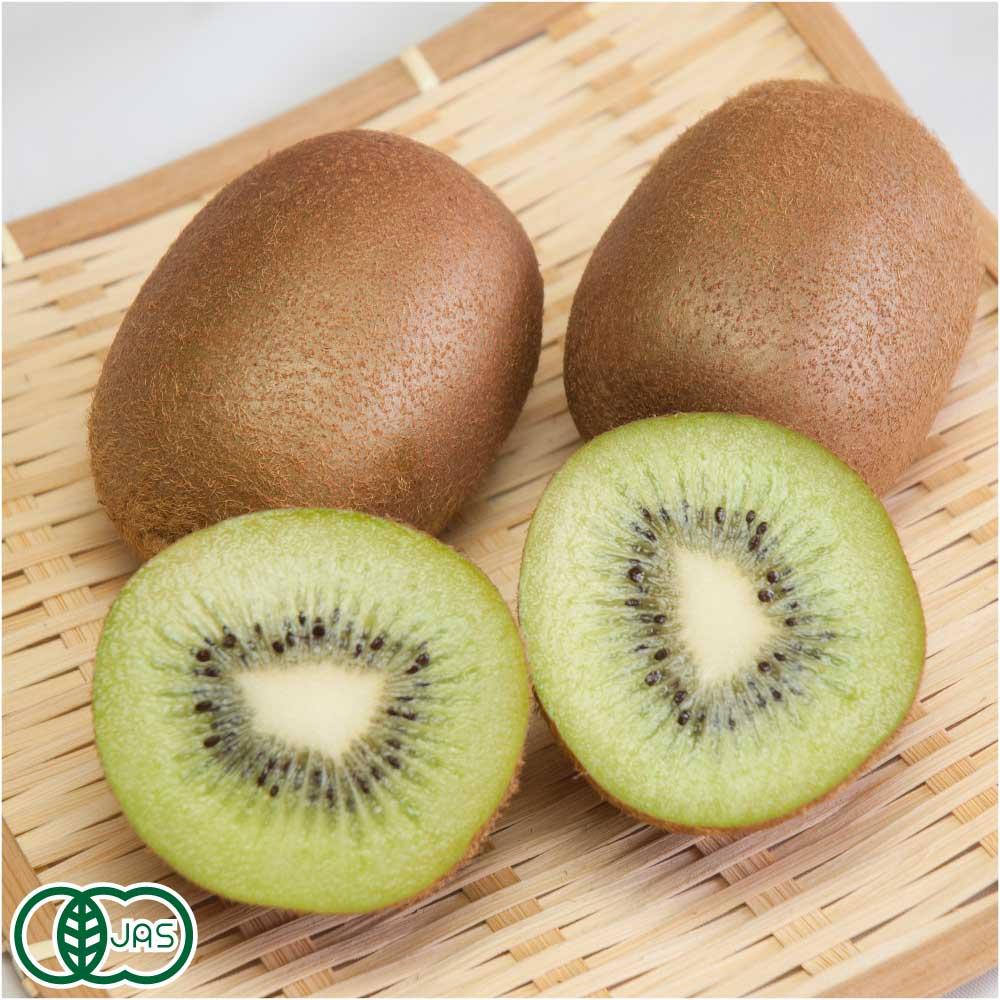 キウイフルーツ 3kg 有機JAS 自然農法 (神奈川県 小田原有機農法研究会) 産地直送
