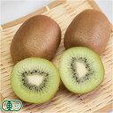 有機キウイフルーツ 3kg 有機JAS (神奈川県 小田原有機農法研究会) 産地直送