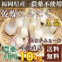 乾燥にんにく(玉) A品サイズ混合 10kg (福岡県 たなかふぁーむ) 農薬不使用 送料無料 送料無料
