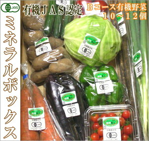 ミネラルボックス 有機JAS野菜詰め合わせBコース(青森県 はまなす生産組合)無農薬オーガニック野菜セット・送料無料・クール便無料