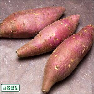 【サイズ混合】 さつまいも(紅はるか) 4kg 自然農法 (静岡県 大仁農場) 産地直送