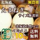 有機JAS 玉ねぎM-LLサイズ(セール) 10kg(北海道自然の会)自然農法たまねぎ・無農薬野菜・送料無料