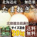 [最終セール] 有機JAS 玉ねぎ サイズ混合 20k g(北海道 自然農法の会) 農薬不使用 送料無料