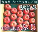 ふじ ジュース加工用 10kg 箱(28〜46個)(青森県 さいとうりんご園) 特別栽培 減農薬 りんご 送料無料 産地直送 お徳用