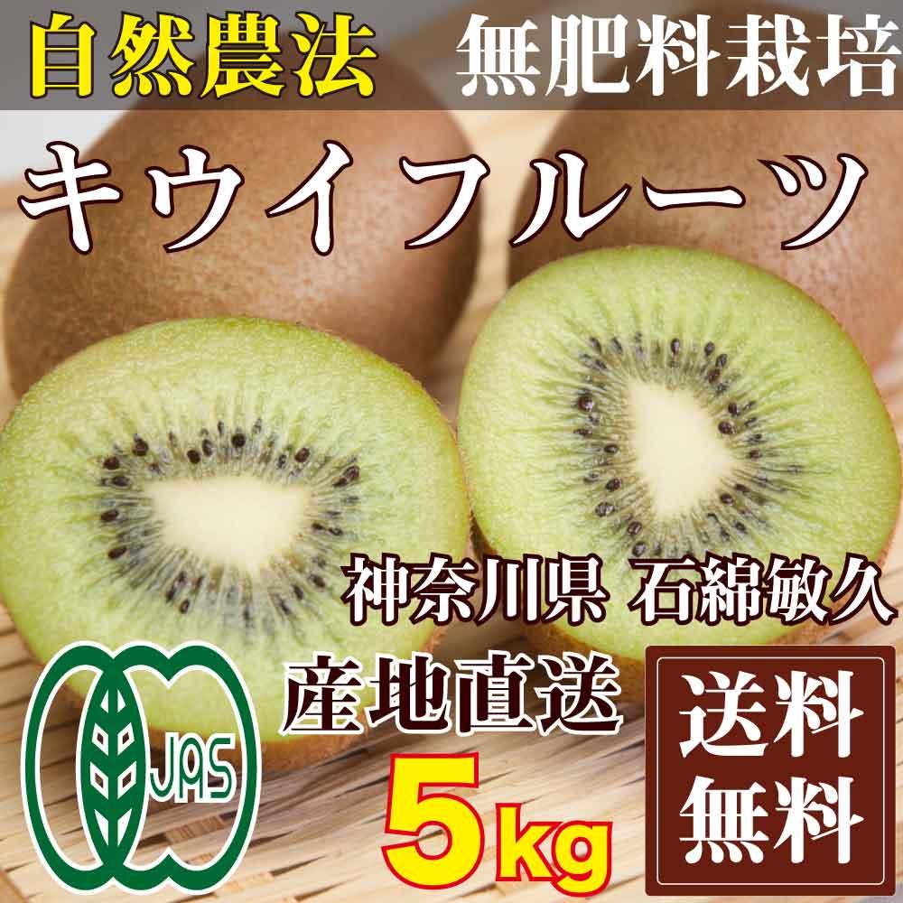 【予約商品】キウイフルーツ 5kg(神奈川県 石綿敏久) 有機JAS 農薬不使用 無肥料 送料無料 産地直送 オーガニック