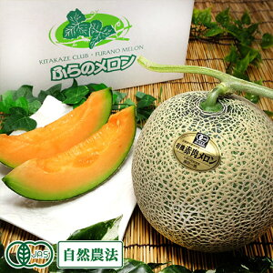 ルピアレッド 2玉(1玉 1.6kg以上) 有機JAS 自然農法 (北海道 原田農園) 産地直送