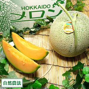 【予約商品】牧場の雫(ティアラ) 2玉(1玉1.6kg以上) 自然農法 (北海道 宮本農園) 産地直送