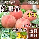 ふるさと21おすすめ白桃「紅錦香」小玉 約2.7〜3kg(12〜14玉) 特別栽培 減農薬 送料無料 山形県産