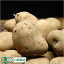 [セール] 北あかり(M〜Lサイズ) 10kg(北海道自然の会)有機JAS・自然農法・無農薬じゃがいも・送料無料