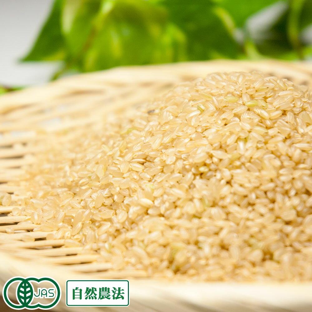 [30年度産][お試し米] 清正 玄米3kg 自然農法 (熊本県 那須自然農園) 産地直送