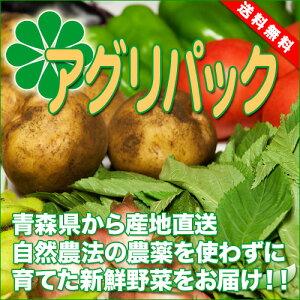 アグリパック(青森 アグリメイト南郷)無農薬野菜セット 自然農法野菜詰め合わせパック