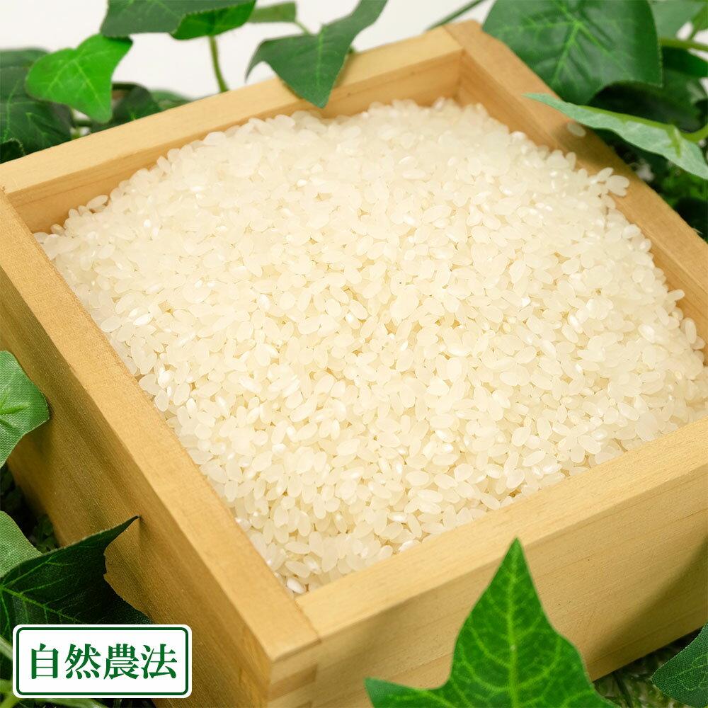 [29年度産] つがるロマン 精米/玄米 5kg(青森県 谷川幸雄)自然農法無農薬米・送料無料・産地直送・自然米