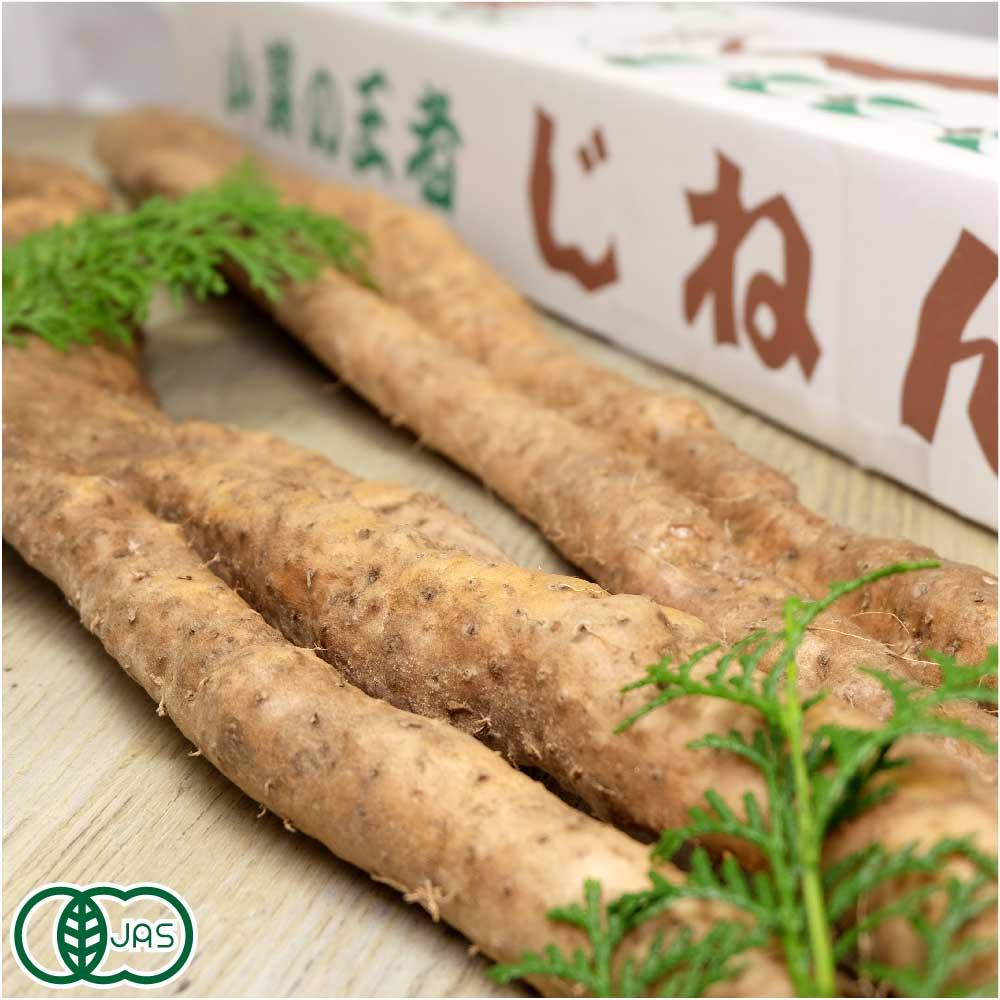 自然薯 家庭用 約1.2kg(1〜5本) 有機JAS (熊本県 那須自然農園) 産地直送