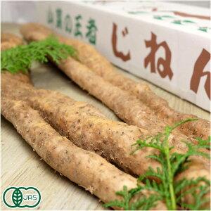 有機 自然薯 家庭用 約1.2kg(1〜5本) 有機JAS・自然農法 (熊本県 那須自然農園) 産地直送