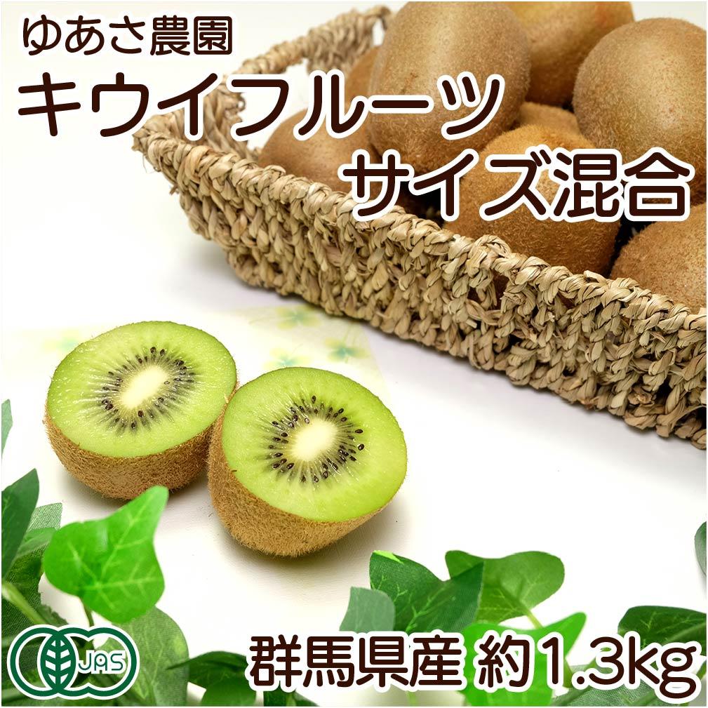 キウイフルーツ 約1.3kgサイズ混合 有機JAS (群馬県 ゆあさ農園) 産地直送