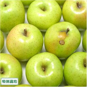 【訳あり】 りんご 王林 5kg箱 特別栽培 (青森県 阿部農園) 産地直送