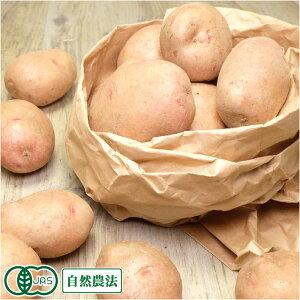 有機 さやあかね (M〜Lサイズ) 10kg 有機JAS・自然農法 じゃがいも (北海道 はるか農園) 産地直送