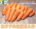 有機JAS にんじん 規格外加工用5kg箱(ふるさと21)無農薬・送料無料・お徳用・ジュース用