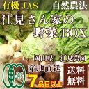 「クール便無料」江見さん家の野菜BOX (岡山県 江見農園) 自然農法 有機JAS 野菜詰め合わせセット 送料無料 産地直送
