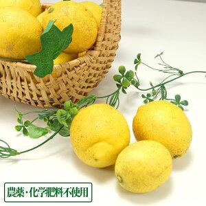 【無選別】広島県産(とびしま)レモン 5kg 無・無 (広島県 とびしま農園) 産地直送