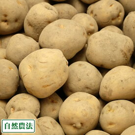 北あかり 10kg(M〜Lサイズ) 自然農法 (青森県 アグリメイト南郷) 産地直送