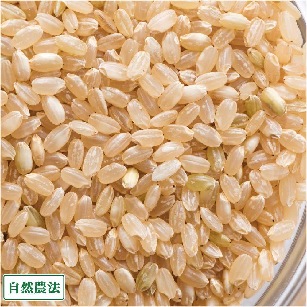[29年度産] つがるロマン 玄米20kg(青森県 阿部農園)自然農法無農薬米・送料無料・産地直送
