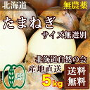 有機JAS 玉ねぎM-LLサイズ(セール) 5kg(北海道自然の会)自然農法無農薬野菜・送料無料