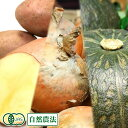 かぼちゃ・じゃがいも・玉ねぎセット約10kg 有機JAS (北海道 はるか農園) 自然農法 産地直送