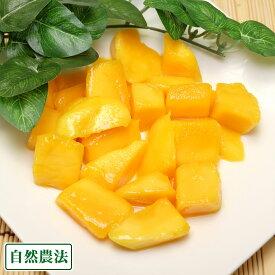 冷凍カットマンゴー 1kg 自然農法 (沖縄県 沖縄マンゴー生産研究会) 送料無料