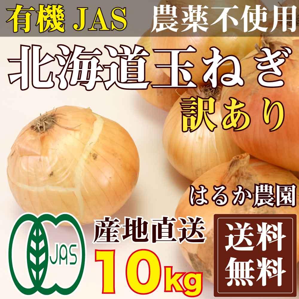 【訳あり 裂皮】玉ねぎ 10kg 有機JAS (北海道 はるか農) 産地直送